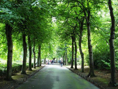 stephens-park.jpg